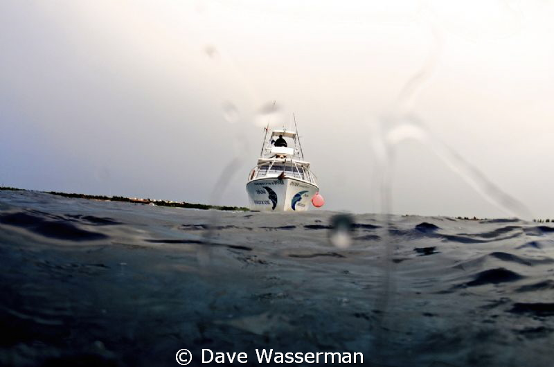 Dive boat by Dave Wasserman