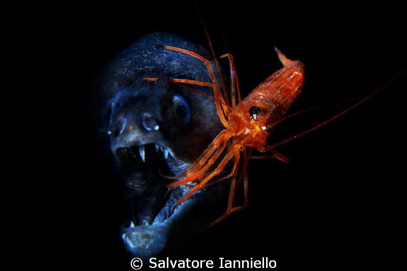 il pulitore by Salvatore Ianniello