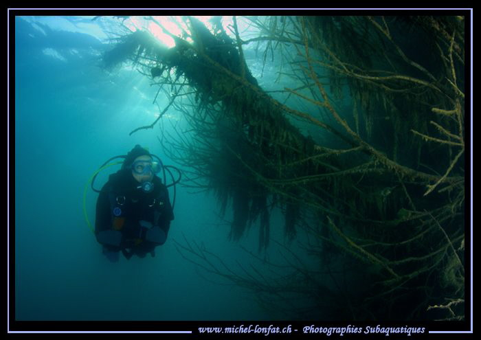 Freshwater diving this week-end...  :O)... by Michel Lonfat