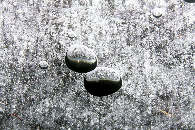 Under the ice by Veronika Matějková