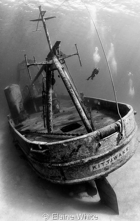Stern of the Kittiwake - Grand Cayman Nikon 700, 10-17 f... by Elaine White