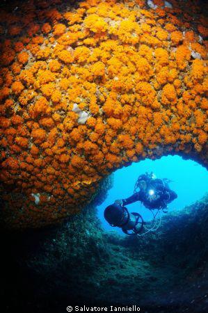 Percorrere le bellezze marine by Salvatore Ianniello