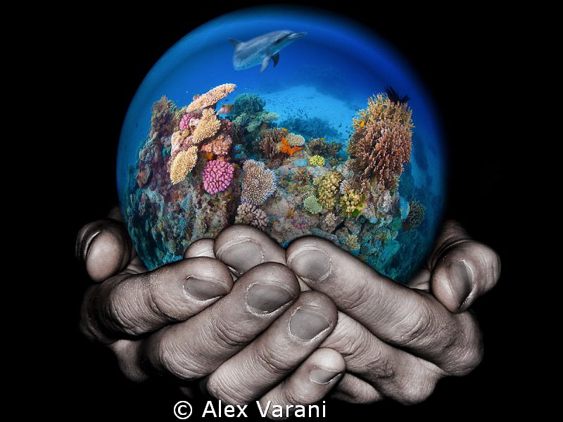 Take care of the reef by Alex Varani
