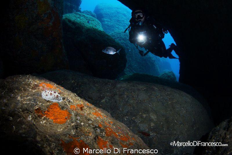 fm the dark by Marcello Di Francesco