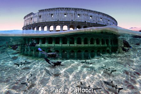 sharks and divers visiting the Colosseum! by Paola Pallocci