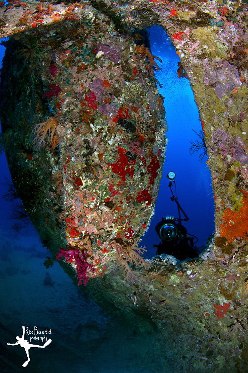 "UW photographer v/s the ""Dunraven"" - Red Sea, Egypt. by Rico Besserdich"