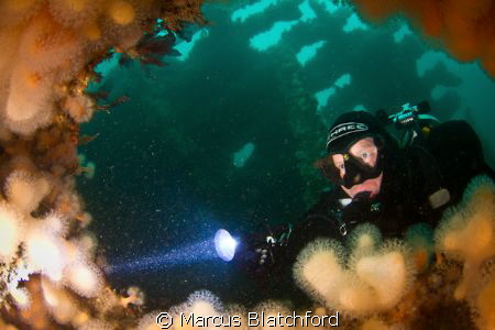 Diver peering through a hole on the Tapti wreck, Isle of ... by Marcus Blatchford