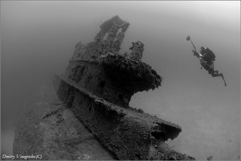 Photographer.