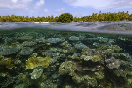 Split of coral reef and remote island at Namu atoll, Mars... by Andre Seale