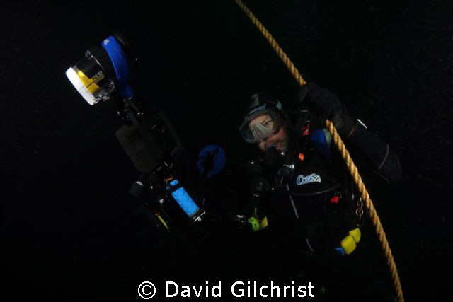 Diver begins ascent from a dive on the Tiller Wreck in La... by David Gilchrist