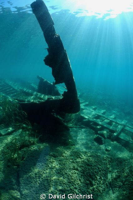 The skeletal bow of a tugboat wreck in Little Tub Harbour... by David Gilchrist