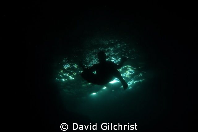 Swimmer jumping into the water at the Grotto site, Georgi... by David Gilchrist