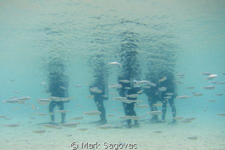 Training Class by Mark Sagovac