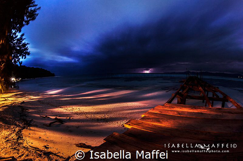"""THE QUIET STORM""