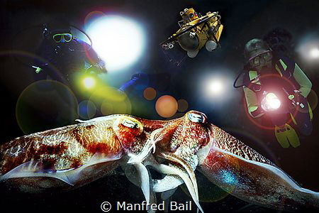 mating squids - and a view things added - nikonosV by Manfred Bail