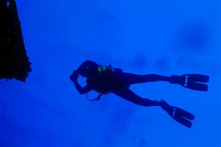 Diver swimming over the wreck of the Jane C. Nikonos V, 2... by Matthew Shanley