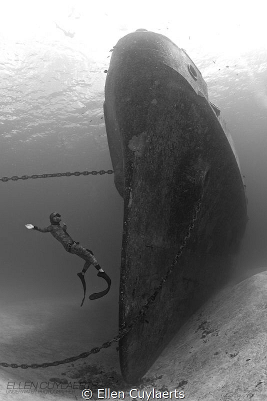 Fly  Freediver at the bow of the EX-USS Kittiwake (Mark... by Ellen Cuylaerts