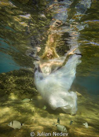 underwater dance 1 by Julian Nedev