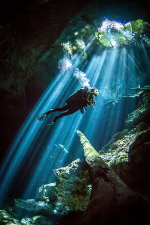 Cenote light. A great add on to an Isle Mujeres Whaleshar... by Steven Miller
