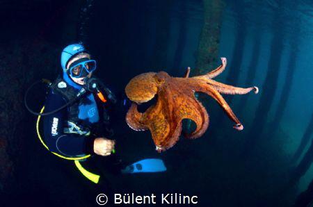 Octapus and Man by Bülent Kılınc