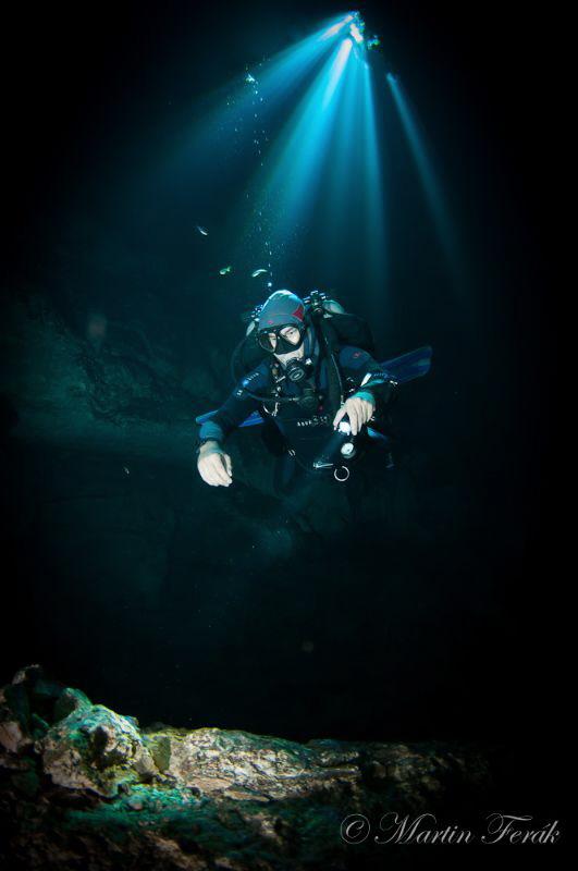 The Diver by Martin Ferak