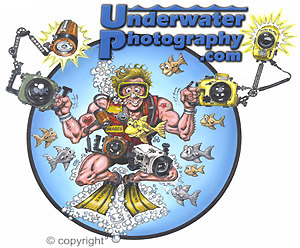 underwater Photoshop