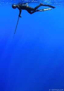 Spearfishing in Crete, Greece