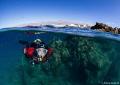 Lanzarote divers paradise. paradise