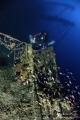 Wreck Valfiorita sunk during Second World War following dismissal British submarine. photo recognizable twin antiaircraft machine gun. 65m depth. submarine anti-aircraft anti aircraft gun depth