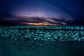Silversides sunset