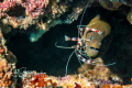 Moray eel banded cleaner shrimp taken drift dive Agincourt reef Great Barrier Reef. Shot 1855 canon Ikelite 18-55 18 55