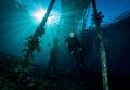 My 12year old daughter diving Raja Ampat 12-year 12 year