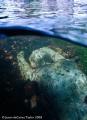 Glass underwater river sculpture called Alluvia Canterbury Kent. Nikon D80. Jason dECaires Taylor. Kent D80 Taylor