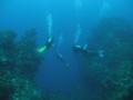 """Entering Deep. Columbia Deep Cozumel Mexico. Deep"""". Deep"""" Mexico"""