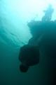 inverted solitude sculpture installed under free diving platform National activites centre chepstow.