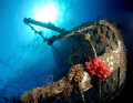 red sea wreck. wreck