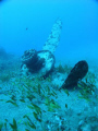 Airplane wreck kreta greece