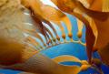 New Growth.Kelp Anacapa Island. Image shot Canon Digital Rebel 1022mm zoom Ikelite Housing. f7.1 1160 second. Growth. Growth Island 10-22mm 10 22mm Housing f/7.1 f/71 f/7 7.1 1/160 160 second