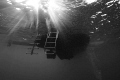 Taken whilst my saftey stop early morning dive liveaboard Red Sea. Viz was horrible so took Black white approach.I like light rays this one. Sea approach. approach one