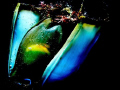 This photo was created accident.Its shark egg.It see small embryo. man dangerous live Mediterranean.It Scyliorhinus canicula spotted. accident.It's accidentIt's accident It's egg. egg embryo Mediterranean. Mediterranean spotted