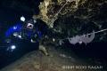 Going Batty North Florida caves