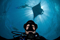 Shooting self portrait while diving snorkeling feeding manta rays Hanifaru Bay. majestic corner world but definitely need regulation human interaction this revealing silhouette shows. Bay shows