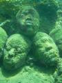 Faces sandUnderwater Sculpture Park 15 25 5m 8m Grenada well worth vist. vist