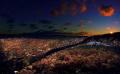 Bottom plant life sunset