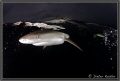 Dark Waters Yap Island Micronesia