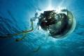 jellyfish nikon D700 1735mmNikon zoom lens 17-35mmNikon 17 35mmNikon