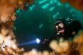 Diver peering through hole Tapti wreck Isle Coll Scotland. Scotland