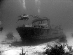 My first wreck dive in the Bahamas in 2003 by Kelly N. Saunders