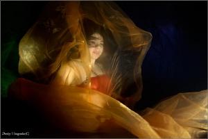 Flame by Dmitry Vinogradov