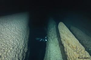 Amazing underwater world (Brazil) by Raoul Caprez